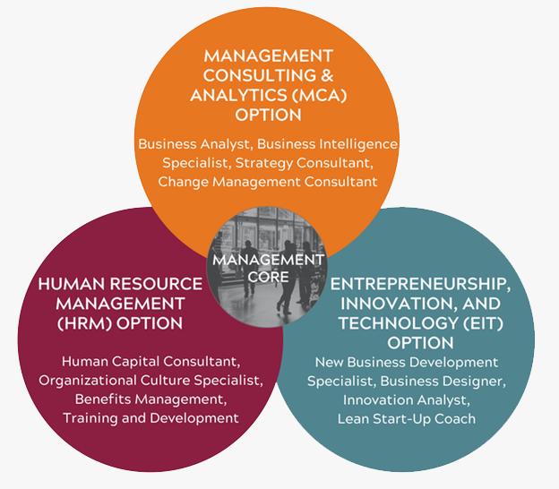 Mahor Technology Management: Undergraduate Program
